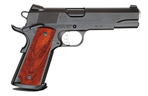 springfield armory professional at nagels