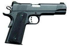 kimber tle 10mm pistol at nagels