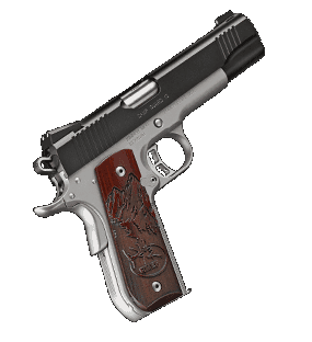 Kimber 1911 Camp Guard 10, 10mm, Black/ Stainless, Round ...