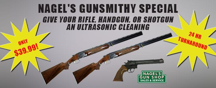 nagels gun cleaning special