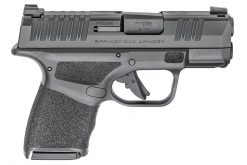 springfield armory hellcat 9mm pisstol at nagels