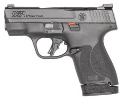 smith & wesson m&P9 shield plus or
